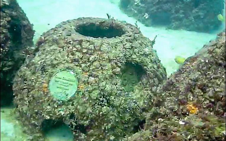 Eternal Reefs - 7-11-2011_023-1